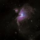 M 42 Orion Nebula,                                Markus