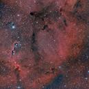 IC 1396-Elefantenrüsselnebel - Neubearbeitung,                                André Rachwalski