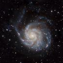 M 101 LRGB,                                Scott Badger