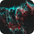 Strands of the Eastern Veil,                                Larry S