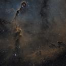 Elephant's Trunk Nebula SHO,                                Seth
