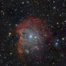 NGC 2174 Affenkopfnebel ,                                Sugar