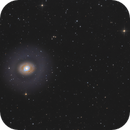 M94 - The Cat's Eye Galaxy,                                Bernhard Zimmermann