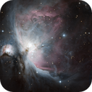 M42 - Orion Nebula,                                Manfred Fellner