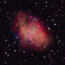 M1 Crab Nebula,                                Michael Finan