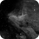Pelican Nebula,                                mads0100
