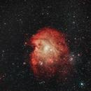 NGC2174 - Monkey Head Nebula,                                francopanetta