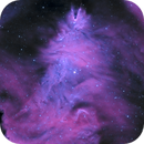 Cone Nebula and Christmas Tree Cluster,                                Alex Gorbachev