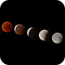 Total Eclipse of the Moon,                                Erika Lac
