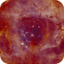 NGC 2237, The Rosette in Ha(HHO),                                Madratter