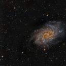 M 33 Triangulum Galaxy,                                Txema Asensio