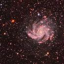 Fireworks Galaxy,                                Mark Holbrook