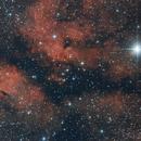 First light f/4 Newtonian: γ Cygni,                                Florian Schleburg