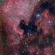 Pelican Nebula and North America Nebula,                                Ken-ichiro Tanaka