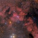 SL 17 Wolf Nebula,                                Philippe BERNHARD