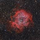 NGC2237 the Rosette Nebula,                                Kees Scherer
