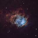 NGC 7538,                                Gary Imm