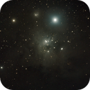 IC 348 Reflexionsnebel,                                Horst Twele