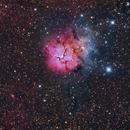 M20 - Trifid Nebula and Gacrux :-),                                Daniel Nobre
