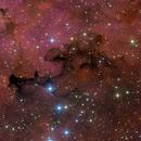 Gamma Cygnus Nebula - RGB plus Hubble Palette image,                                Eric Coles (coles44)