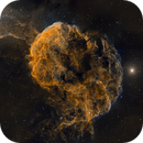 IC443 The Jellyfish Nebula in SHO,                                Frank Zoltowski