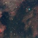 NGC7000 & IC5070,                                Dave