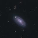 M88,                                Peter Webster