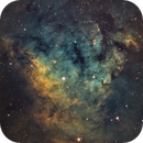 Sharpless 171 (NGC 7822) in Narrowband,                                Muhammad Ali