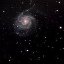 M101,                                Virginie