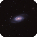 NGC 2903,                                Hunter Harling