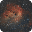 IC410 - Tadpoles Nebula,                                Ahmet Kale