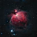 Nebulosa di Orione M42,                                Andrea Losi