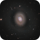 Messier 94,                                Barry Wilson