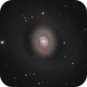 Messier 94,                                Barry Wilson