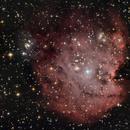 Nebulosa Cabeza de mono,                                Ernesto Arredondo