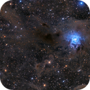 Iris Nebula,                                Davide Coverta