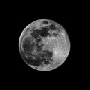 Full Moon,                                Alexander Todorov
