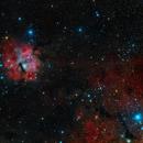 Gum 15 - Constellation Vela,                                Frank