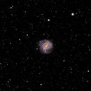 Southern Pinwheel Galaxy M 83,                                Jim Pollard
