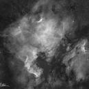 The North American & Pelican Nebula- 4 panel mosaic,                                Matt Harbison
