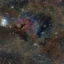 IC348 and NGC1333 in Perseus,                                Marukawa