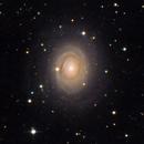 NGC 2985 - crop,                                Gotthard Stuhm