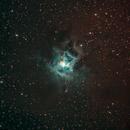 Iris Nebula,                                Jammie Thouin