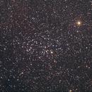 NGC 3532 livestack,                                DavidLJ