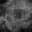 NGC 2244,                                zoyah
