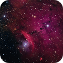 NGC 6559 and IC 4685,                                Dean Carr