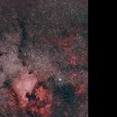 Large field  centered on NGC 7000 & Pelican Nebula,                                Philippe Renaud
