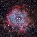 Rosette Nebula,                                Jorge Martin Blazquez