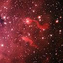 Tadpoles Nebula IC 410 - First Light ED127,                                Starman609