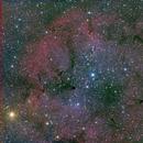 Elephants Trunk IC 1396,                                ryan92626